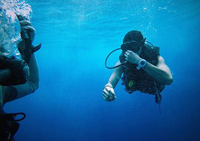 diving in koh pha ngan, thailand