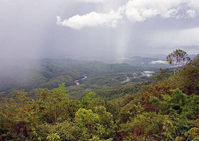 Doi Phu Kha National Park Thailand