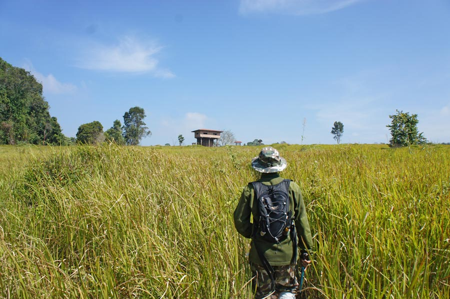 trail in Khao Yai
