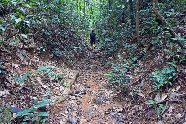 Khao-Sok-Trekking