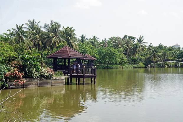 bang krachao lake
