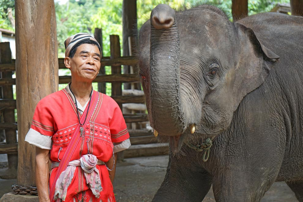 Elephant with his karen mahout
