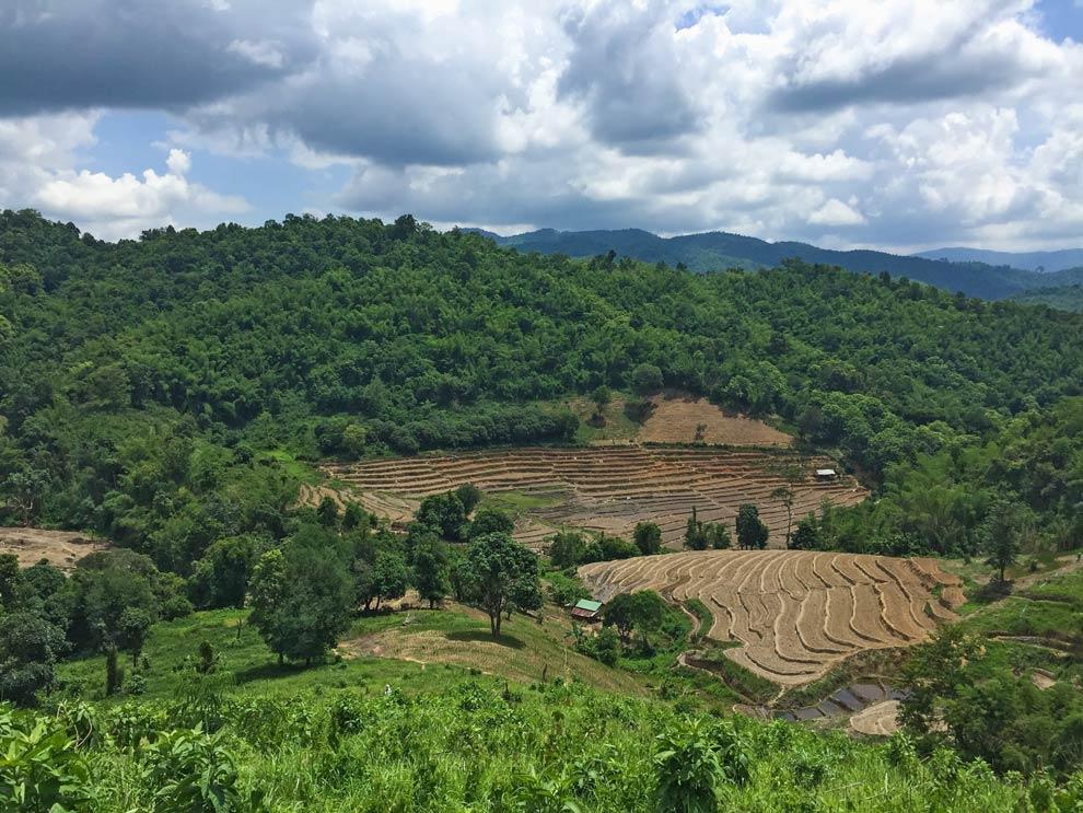 Landscape north of thailand