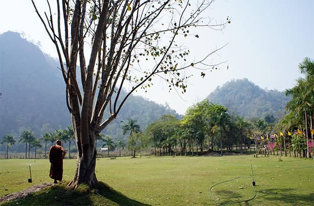 wat tam wua temple