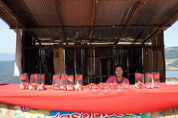 strawberries phu chi fa